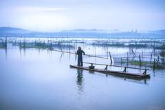 We rise by lifting others (pramuditalina) Tags: lake fishing net morning bluehour misty