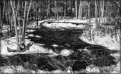 0803-  Winter Stream (canuckguyinadarkroom) Tags: ice snow stream nature winter monochrome
