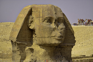 Sand buried the colossus up to its shoulders