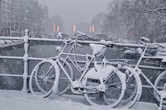 Do snowflakes ever fall in the wrong place? (B℮n) Tags: bike snow covered bikes bicycle holland netherlands canals winter cold street anne dutch people scooter gezellig cafés snowy snowfall atmosphere colorful walk walking cozy light corner water canal weather cool sunset file celcius mokum pakhuis grachtengordel unesco world heritage sled sleding slee seagull nowandthen meeuw seagulls meeuwen bycicle 1°c sun shadows sneeuw brug slippery glad flakes handheld wind code rood amsterdam umbrella colors singel 100faves topf100 200faves topf200