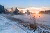 Winter sunrise dream ... (acbrennecke) Tags: achimbrennecke sunrise landschaft landscape snow orange foggy nikon5500 nikon gegenlicht ray ngc
