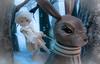 TOPW Seasonal Lights Night Walk 2017 - Rynka the Rabbit Rider (Jay:Dee) Tags: topw2017rs topw toronto photo walks 2017 seasonal lights night walk christmas window display the bay hudson company rabbit bunny