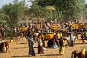 The struggle for water in Ethiopia (CamelKW) Tags: ethiopia2017 struggle water ethiopia crisis
