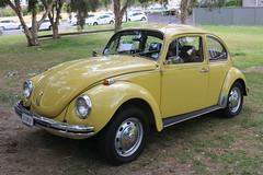 1972 Volkswagen Type 1 (jeremyg3030) Tags: 1972 volkswagen type1 cars german bug beetle automatic