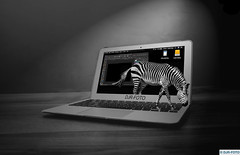 DJR-Foto Zebrabook (DJR-FOTO) Tags: zebra animal tier tiere 4k uhd djrfoto deutschland dortmund djr sw bw blackwhite schwarzweis awsome awesome great photoshop affinityphoto mac macintosh apple macbook macbookpro magic magie