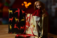 """...let your heart be light..."" (jessandgrace) Tags: doll portrait colorimage colors bokeh lights backgroundblur legs fishnet red ribbon cookiebox tin figure face eyes greeneyed hair bighair braids ginger blonde golden ashlynnella everafterhigh eah pretty beauty glamour cute indoor"