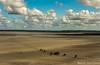 Horses at low tide Mont Saint Michel (wardkeijzer_107) Tags: montsaintmichel horses lowtide beach plage strand paarden chevaux wolken clouds nuage