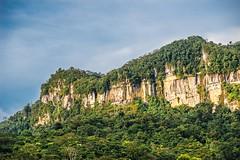 Florían_FAV1497 (fotosclasicas) Tags: rainforest rocks trees sky landscape colombia climbing hicking southamerica santander florían