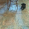 "Ritzy admires our new dining room tiled floor December 12th, 2017 (steveartist) Tags: dogs smalldogs poodles flooring tile largetiles ""vestigepattern"" floordecor chair tableleg ceramictiles iphonese snapseed interiors floors tilefloors stevefrenkel productofspain"