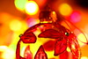 Bauble and Bokeh (acwills2014) Tags: bauble bokeh christmas colour color bright colourful transparant light decoration festive cheer elegant yellow red macro mondays macromondays themebokeh