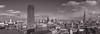 London Panorama (JoshyWindsor) Tags: thames saintpaulscathedral switchhouse urban blackandwhite london river panorama streetphotography metropolis city cityscape canoneos6d tatemodern theshard stpauls