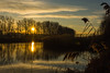 dec27sunrise-13 (bakosgabor57) Tags: sunrise morning light colors grass reed pier nikon d7200 1755