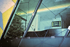 Queen Mary Maths Christmas Tree (Matthew Huntbach) Tags: mathematics qmul queenmary eastlondon halinamw35 kodakultramax400 christmastree kodakultramax