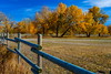 Not Finished (stevenbulman44) Tags: canon calgary alberta 2470f28l filter tree fence autumn polarizer blue sky color landscape