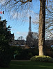 2017 Paris: Eiffel Tower from musée Rodin (dominotic) Tags: 2017 paris france eiffeltower tree champsdemars iron history architecture iphone6 lattice latoureiffel