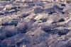 Ice Flowers (LadyBMerritt) Tags: iceflowers frostflowers lake ice crystals icecrystals winter frozen