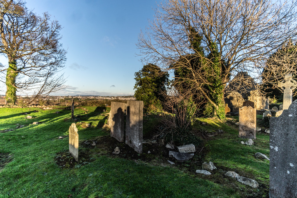 ANCIENT CHURCH AND GRAVEYARD AT TULLY [LAUGHANSTOWN LANE NEAR THE LUAS TRAM STOP]-134593