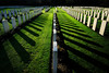 17122193 (felipe bosolito) Tags: cementary wwii commonwealth rows shadow green many fuji xpro2 xf1655 velvia