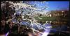 Flowerfull moment (Giorgio Verdiani) Tags: belair 612 x belairx612 trailblazer film pellicola diapositiva slide fujifilm fujichrome 100asa 100iso mediumformat medioformato lomography lomo 120 rollfilm rullo lightleaks infiltrazionidiluce firenze florence tuscany toscana italy italia river fiume water acqua kayaks canoa canoe sky cielo flowers fiori tree albero
