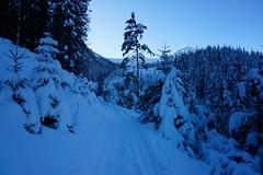 _DSC4502 (farix.) Tags: kasprowy tatry tatras tatryzachodnie skitour skitury snow skitur śnieg gąsienicowa zakopane narty kuźnice