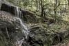 Water Falls_20171008_061 (falconn67) Tags: waterfall newengland fall autumn river berkshires stream canon 5dmarkiii 24105mml longexposure connecticut