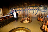 8H2_79950323 (kofatan (SS Tan) Tan Seow Shee) Tags: usa seattle starbucks1912 pikesmarket emeraldcitytour argosycruises redindian safecofield boeing kofatan sstan
