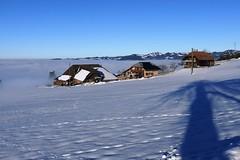 Am Heiligabend 2017 von Signau nach Eggiwil (Martinus VI) Tags: heiligabend winter winterlandschaft wintertag hiver emmental schnee snow nieve neige kanton de bern berne berna berner bernese canton schweiz suisse suiza switzerland svizzera swiss martinus6 martinus6xy martinusvi martinus y171224
