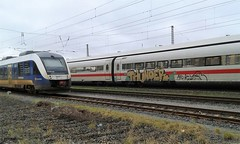 Graffiti (Honig&Teer) Tags: graffiti honigteer hannover hildesheim db deutschebahn spraycanart streetart sport steel aerosolart eisenbahngraffiti eisenbahn railroad railroadgraffiti t train treno traingraffiti trainart trein urbanart panel vandalismus bombing ice art kunst trainspotting benching trainwriting aerosol vandalism