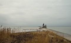 Ein Schiff wird kommen... (liebeslakritze) Tags: gray winter desire waiting ship coast beach woman mole cloudy calm winstille ostsee frau warten schiff strand ufer sehnsucht
