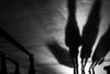Zürich (SinoLaZZeR) Tags: zurich zürich schweiz switzerland blackwhite blackandwhite bw shadow shadows street streetphotography schwarzweiss streetlife fujifilm fuji finepix xpro2 瑞士 苏黎世 人 街头摄影 纪实摄影 欧洲 人影 hb hauptbahnhof xf