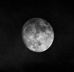Waxing Gibbous Moon Phase: 90% illumination (peggyhr) Tags: peggyhr moon 90 winter waxinggibbousphase saturday december302017 dsc05262y vancouver bc canada carolinasfarmfriends