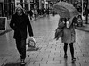 In your face (Nikonsnapper) Tags: leica m10 summicron 50mm street windy umbrella paving bw candid uncool uncool2 uncool3 uncool4 uncool5 uncool6 uncool7