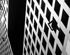 P8278825-1bordbig (elsuperbob) Tags: facades architecture cambridge massachusetts boston massachusettsinstituteoftechnology mit dormitory windows squares steel