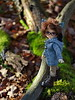 Autumn sunshine (Human Beans) Tags: bjd abjd fairyland littlefee lishe glasses forest moss autumn sunshine knitted