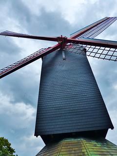 (16) Allemaal Brugge