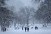 20180104-IMG_2553 (BumbyFoto) Tags: manhattan nyc newyorkcity newyorkstate city citylife citystreet cold coldtemperature frost polarclimate season snow street winter