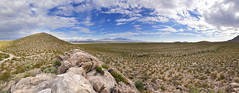 Chihuahuan Desert Landscape (BongoInc) Tags: newmexico chihuahuandesert lascruces desertlandscape chihuahuandesertnaturepark