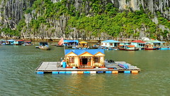 Floating House with Terrace (gerard eder) Tags: world travel reise viajes asia southeastasia vietnam northernvietnam halongbay village villagelife floatingvillage floatinghouse wasser water landscape landschaft paisajes natur nature naturaleza outdoor
