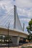 Sydney Metro - Skytrain - 2 (john cowper) Tags: sydneymetro skytrain bridge cablestayed windsorroad rousehilldrive rousehill transportfornsw nswgovernment northwestraillink northwest sydney newsouthwales