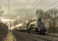 Last Time (4486Merlin) Tags: 60009 ecml england europe exlner lnerclassa4 railways southyorkshire steam streak transport unionofsouthafrica unitedkingdom doncaster gbr arksey christmaswhiterose rytc wcrc