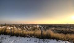 A cold perspective. (Alex-de-Haas) Tags: 1635mm camperduin d750 dutch hdr holland hondsbosschezeewering nederland nederlands netherlands nikkor nikkor1635mm nikon nikond750 noordholland thenetherlands westfriesland belichting cloudless daglicht daylight handheld hemel highdynamicrange landscape landscapephotography landschap landschapsfotografie licht light lighting lucht onbewolkt skies sky sneeuw snow sundown sunset unclouded winter zonsondergang
