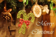 Congratulations! (ollivver) Tags: merrychristmas christmasdecorations garland macro