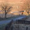 Morning Delivery (nrg_crisis) Tags: morning sunlight shadow shade rural farm tree truck fence hff virginia shenandoahvalley hills