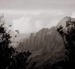 Kaaalahina Ridge (efo) Tags: bw film ricohflex kauai hawaii ridge waimea canyon napali tropical