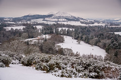 Scott's view in winter (ola_er) Tags: view panorama borders scottish landscape winter snow