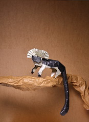 IOIO 2017: Cottontop Tamarin (IG: bartfartsart) Tags: origami paper art hobby interest fun cottontop tamarin ape monkey animal