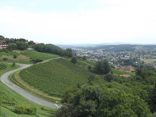 Vineyards, Deutschlandsberg, Austria