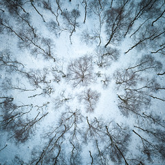 The view from above (evorichie101) Tags: derbyshire peakdistrict pro mavic dji winter snowscape landscape birch silver drone droneview