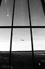 bw001 (mitthimlavalv) Tags: bw newbie stockholm sweden window sky arlanda airport plane planes airplane