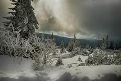 Snow Landscape (sigiha1953) Tags: winter schnee snow landschaft landscape snowlandscape berg mountain